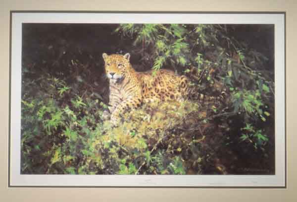 david shepherd, Jaguar, print