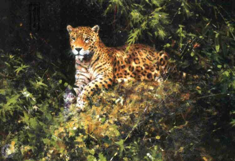 david shepherd jaguars prints