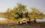david shepherd African evening, Zambezi waterhole, print