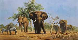 david shepherd african landscape elephants print