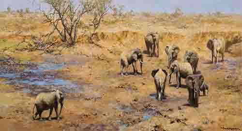 david shepherd african waterhole elephants, signed, limited edition, print