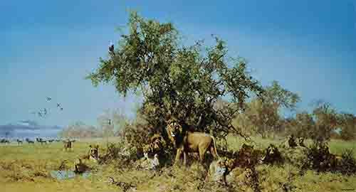 david shepherd Africa silkscreen print