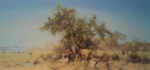 david shepherd signed limited edition print africa silkscreen