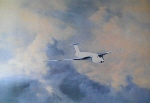 Afternoon Flight Victor David Shepherd aviation print