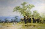 david shepherd, Amboseli, silkscreen, elephants