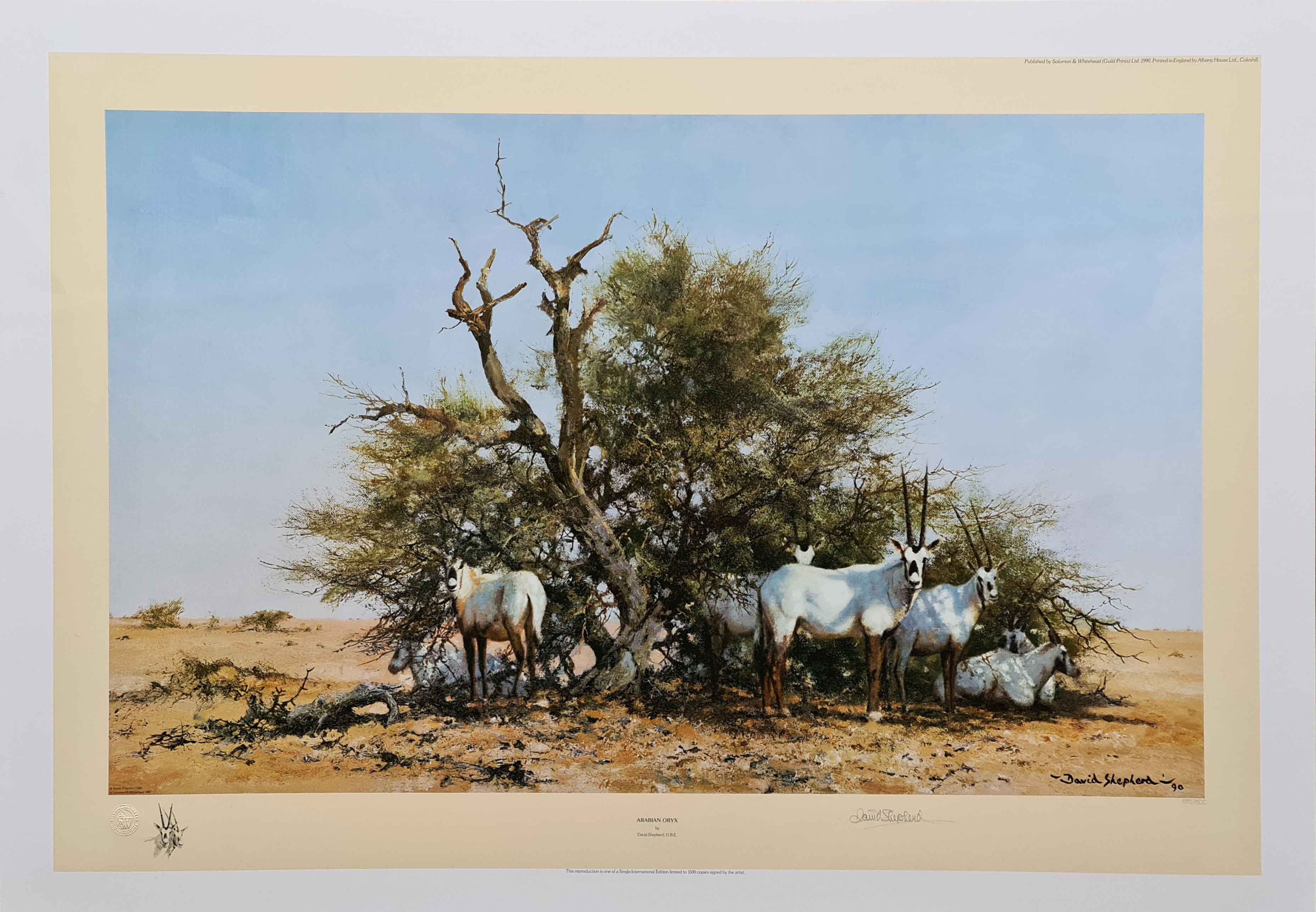 david shepherd, Arabian Oryx, signed limited edition print