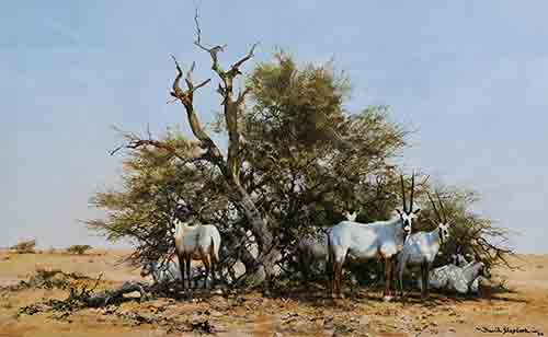 david shepherd arabian oryx