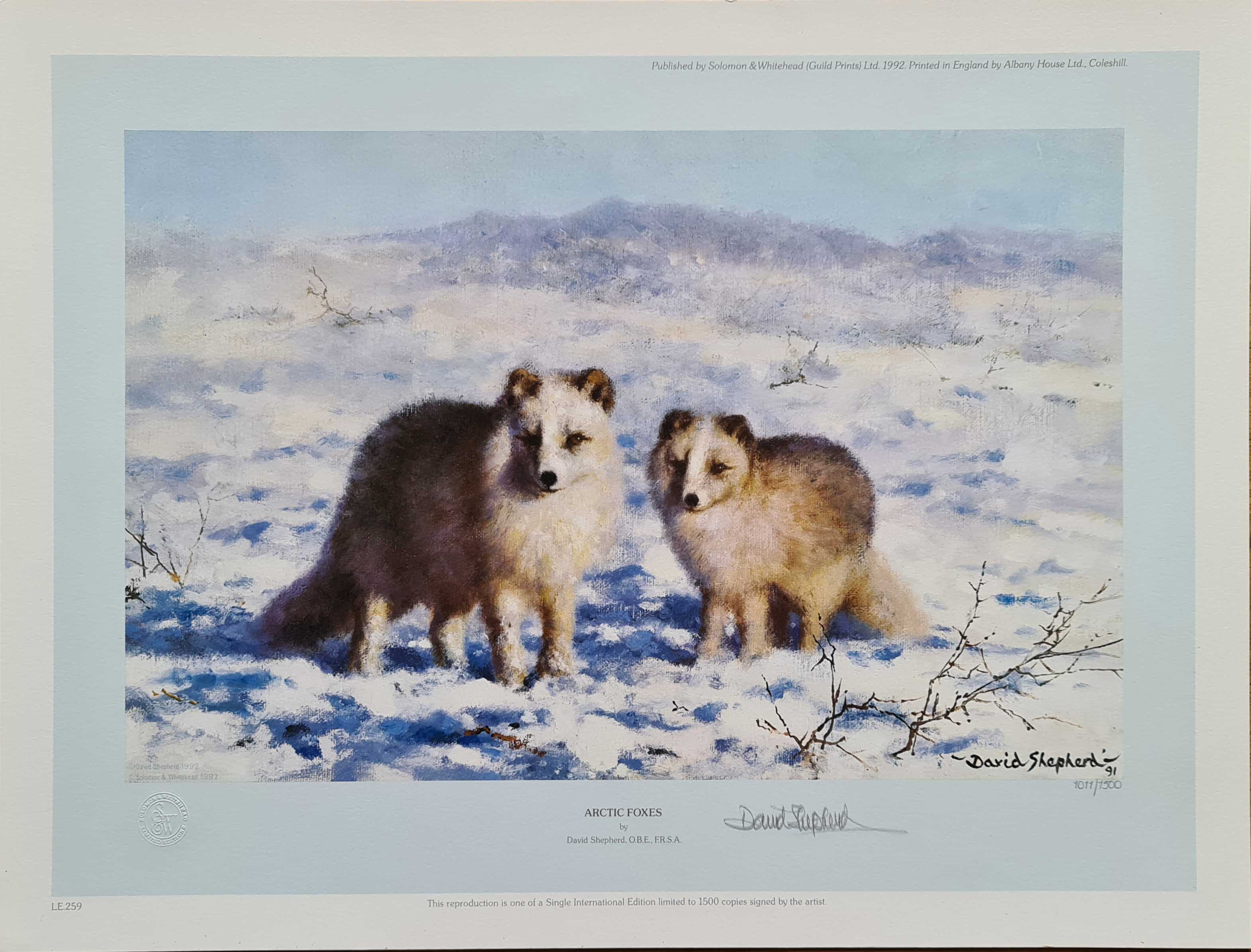 david shepherd Arctic Foxes, signed, limited edition, print