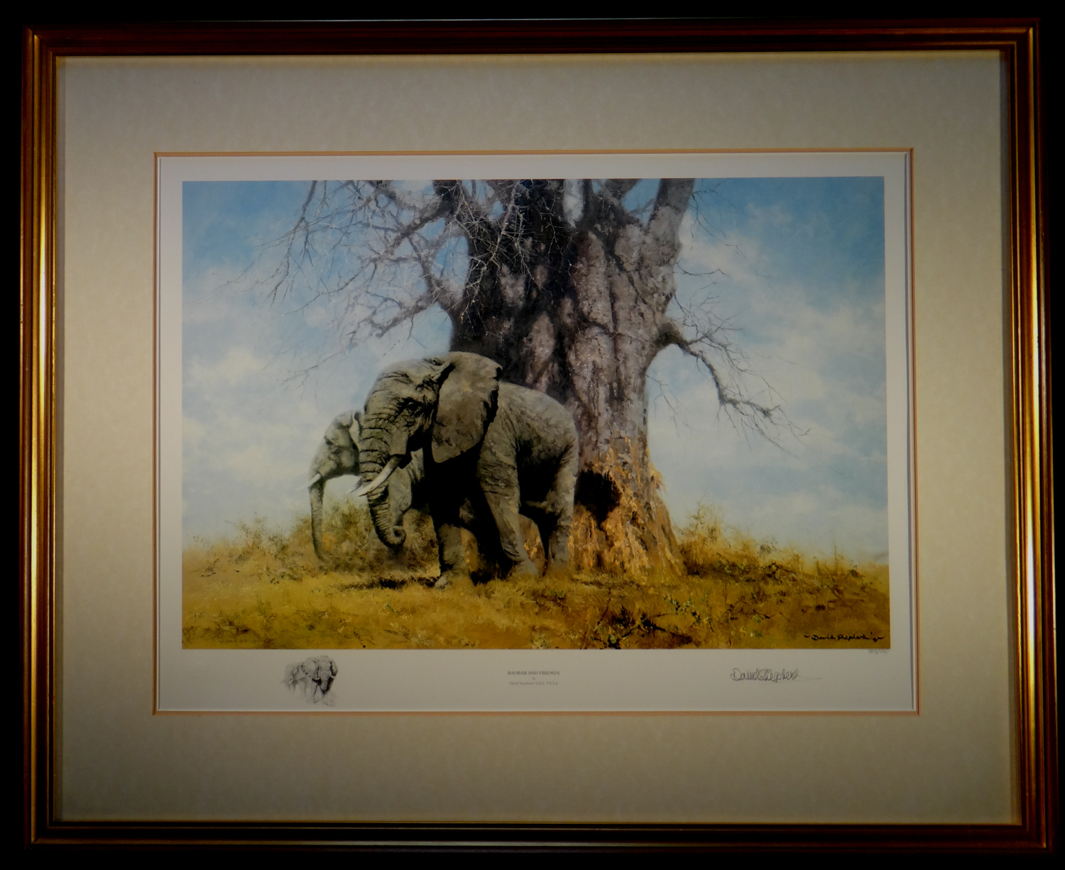david shepherd, signed klimited edition print, baobab and friends