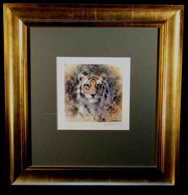 david shepherd, bengal tiger, cameo, tiger, signed limited edition print