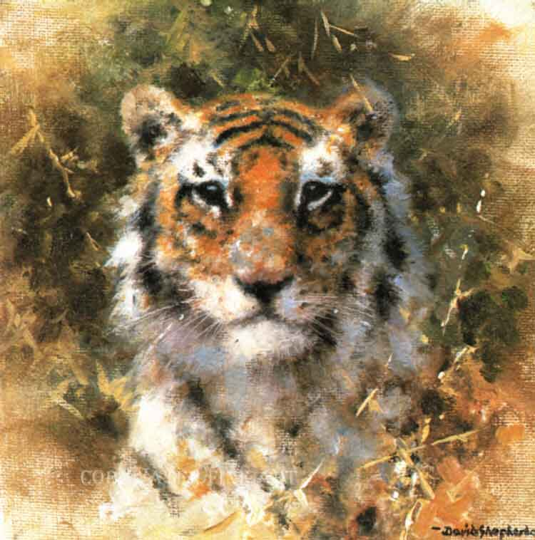david shepherd bengal tiger
