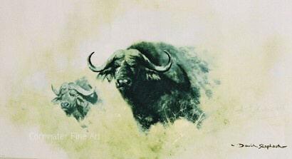 bfbuffalo