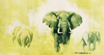 david shepherd elephant big five collection, elephants, signed, limited edition, print