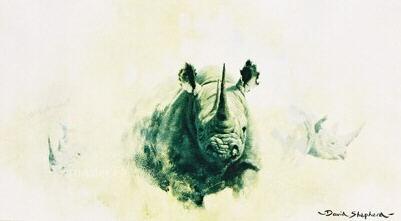 bfrhino