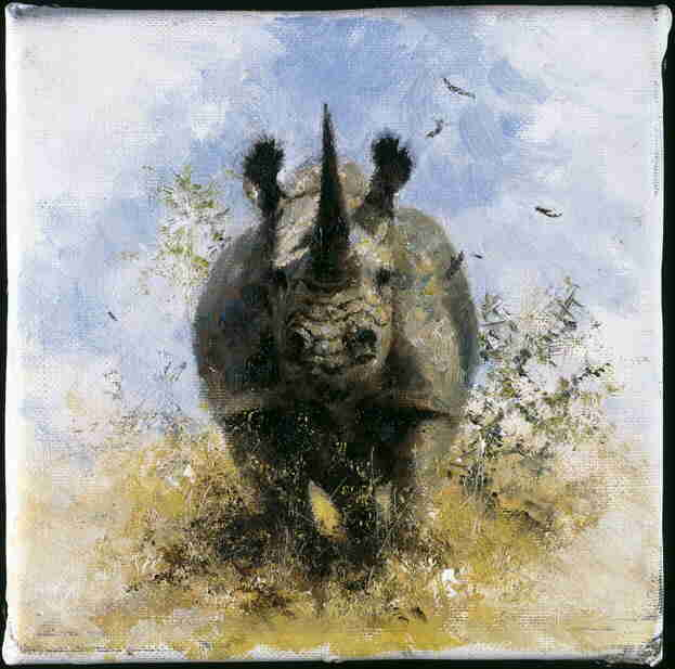 david shepherd  black rhino signed print