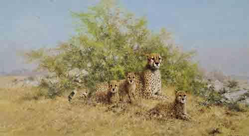 david shepherd cheetah family print