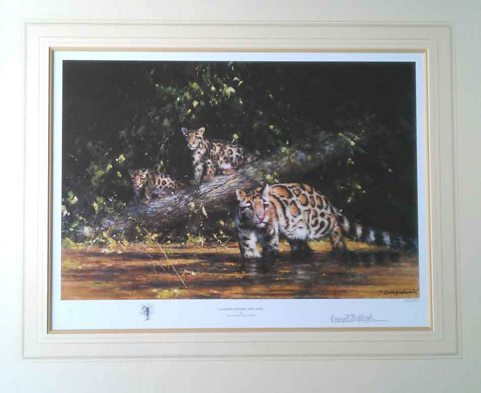 david shepherd Clouded leopard and cubs print