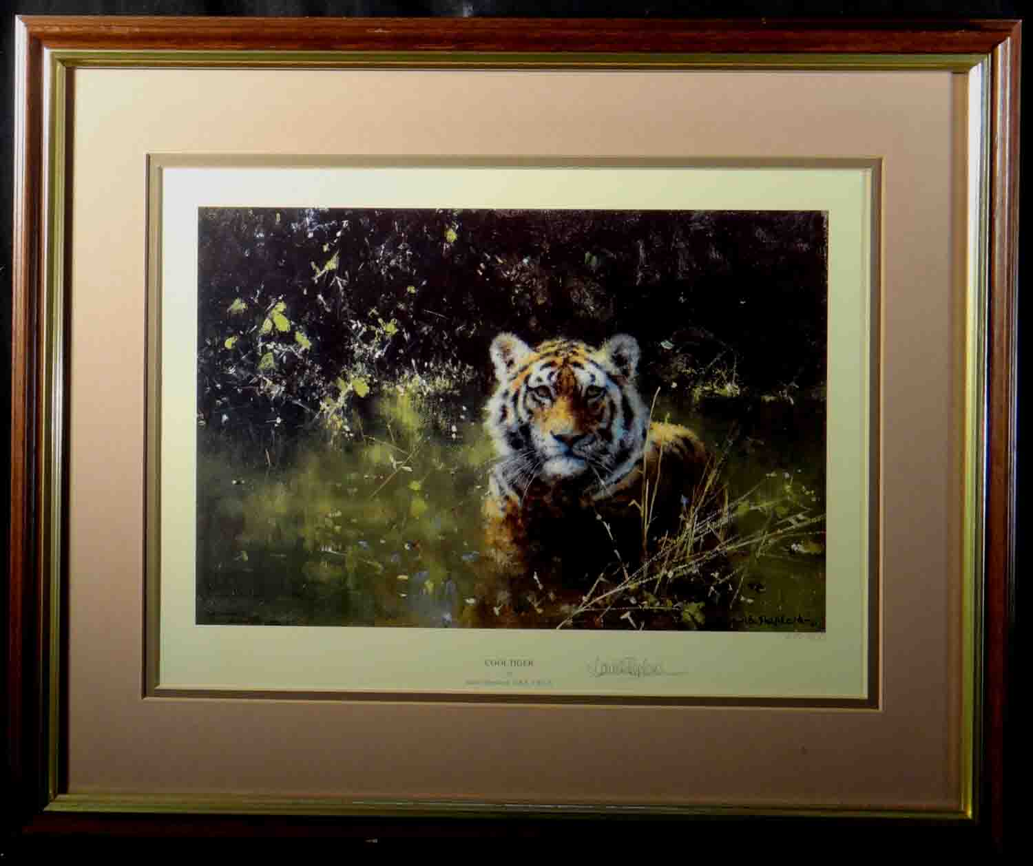 david shepherd, cool tiger, cameo, tiger, signed limited edition print