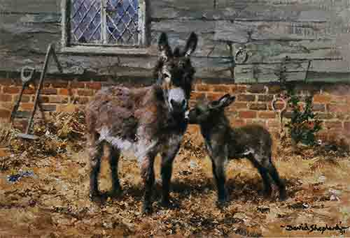 david shepherd, Donkeys prints