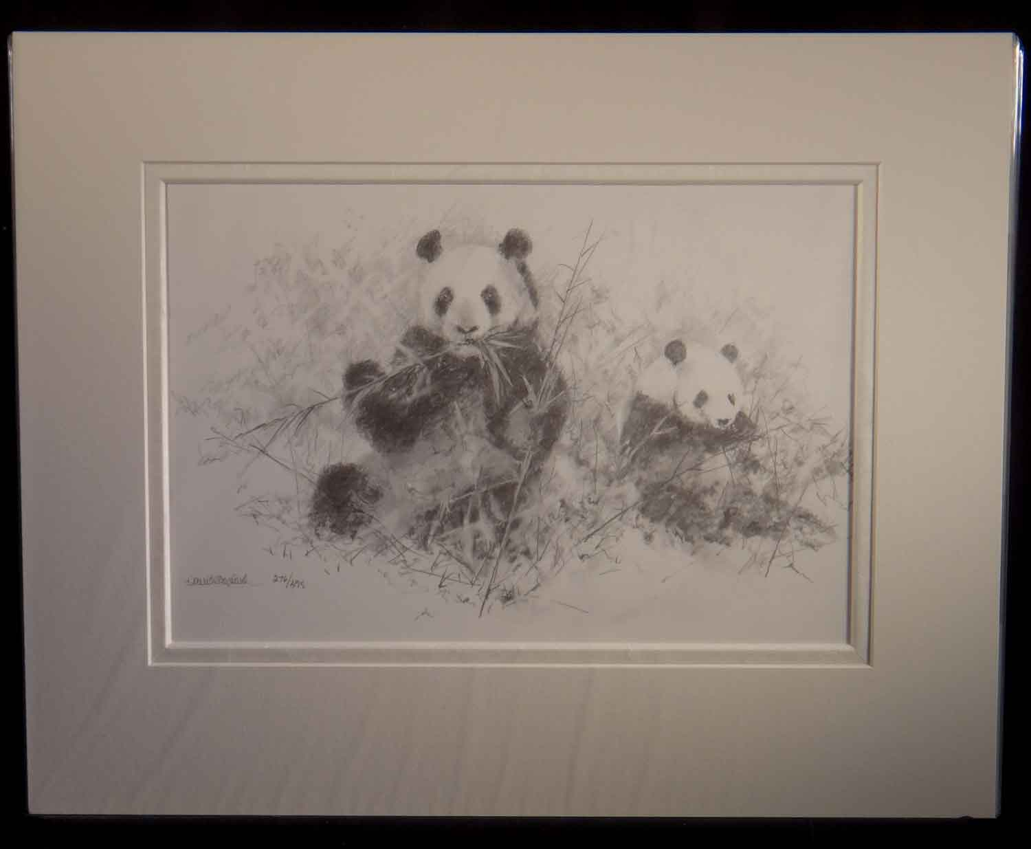 david shepherd, pandas, pencil, sketch, drawing