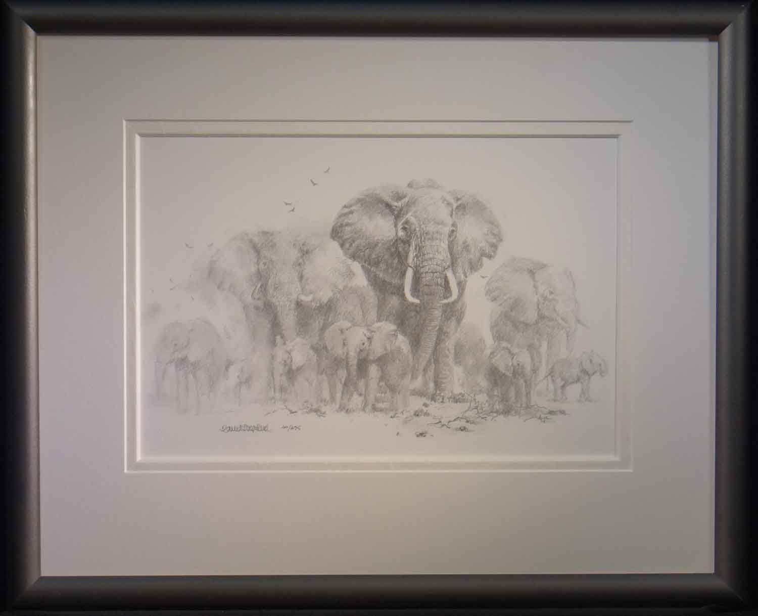 elephant drawing 475