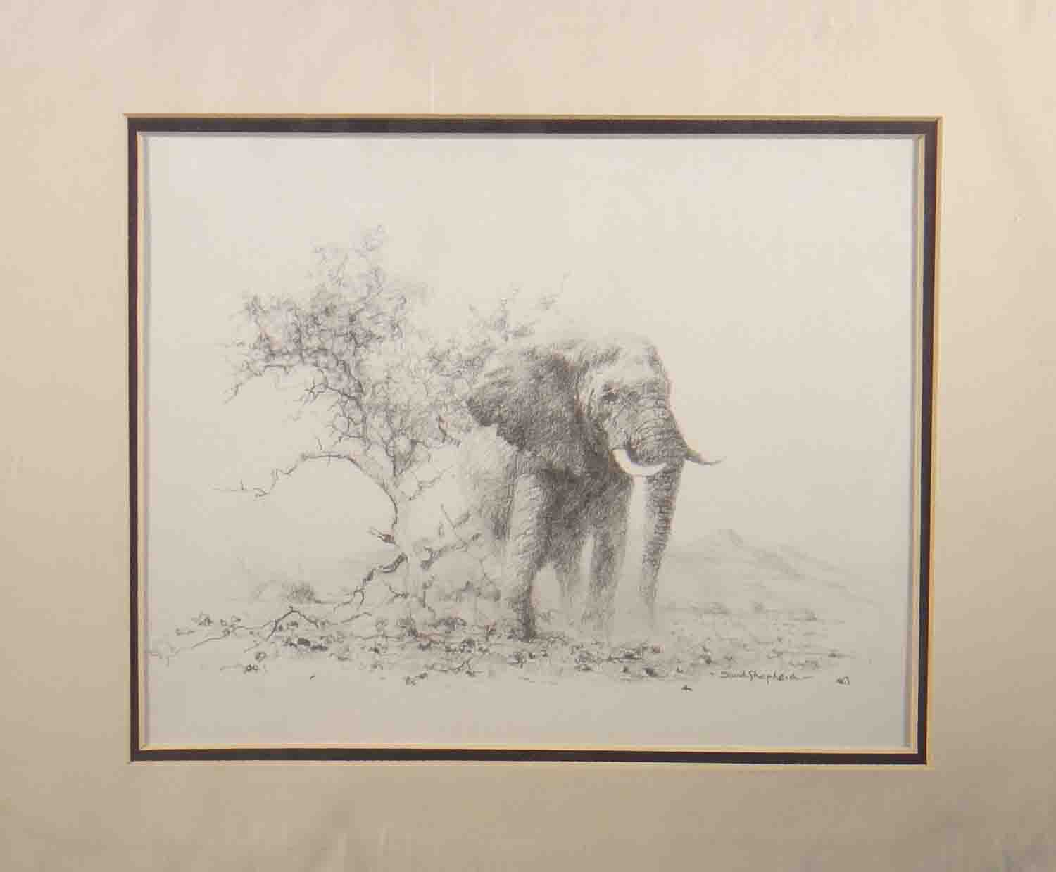 david shepherd, elephant, open edition print