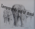 david shepherd elephant signed elephants 1998 pencil drawing print