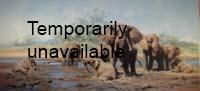 david shepherd elephant heaven elephants, signed, limited edition, print