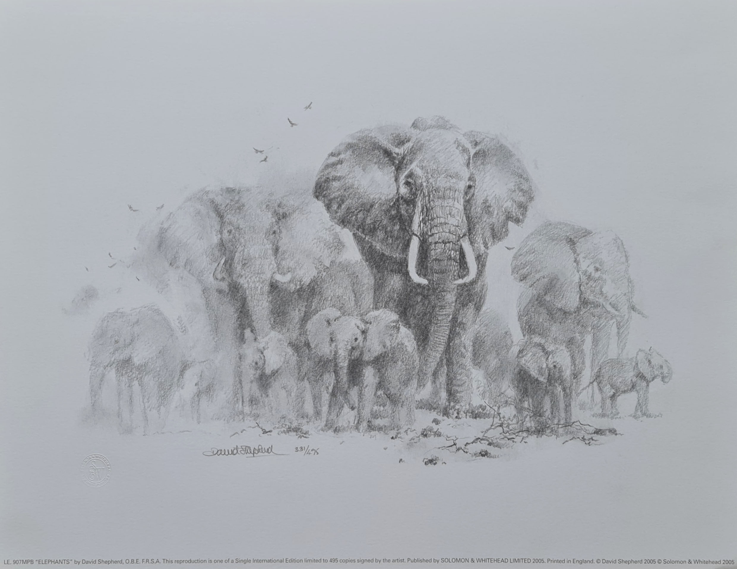 elephant drawing 2005