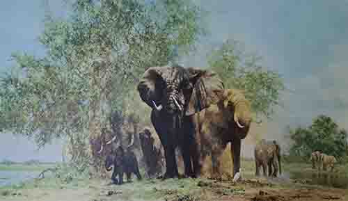 david shepherd elephant and egrets elephants print