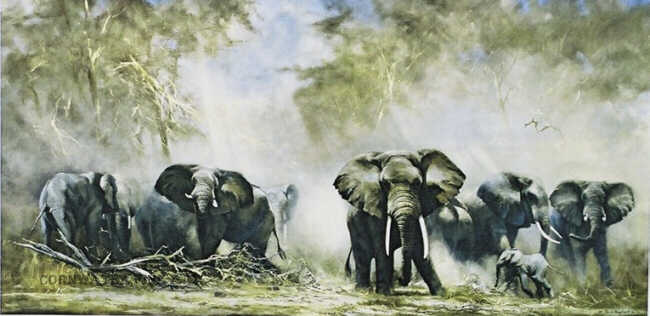 Elephants at Amboseli, David Shepherd