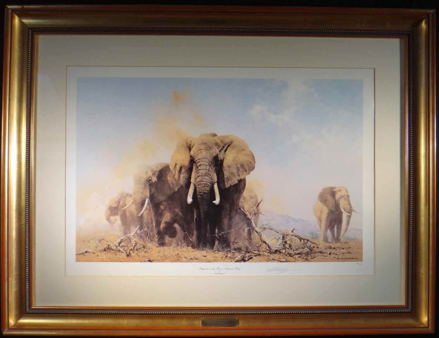 david shepherd, Elephants at Tsavo National Park