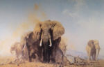 david shepherd elephants at Tsavo, elephants, signed, limited edition, print