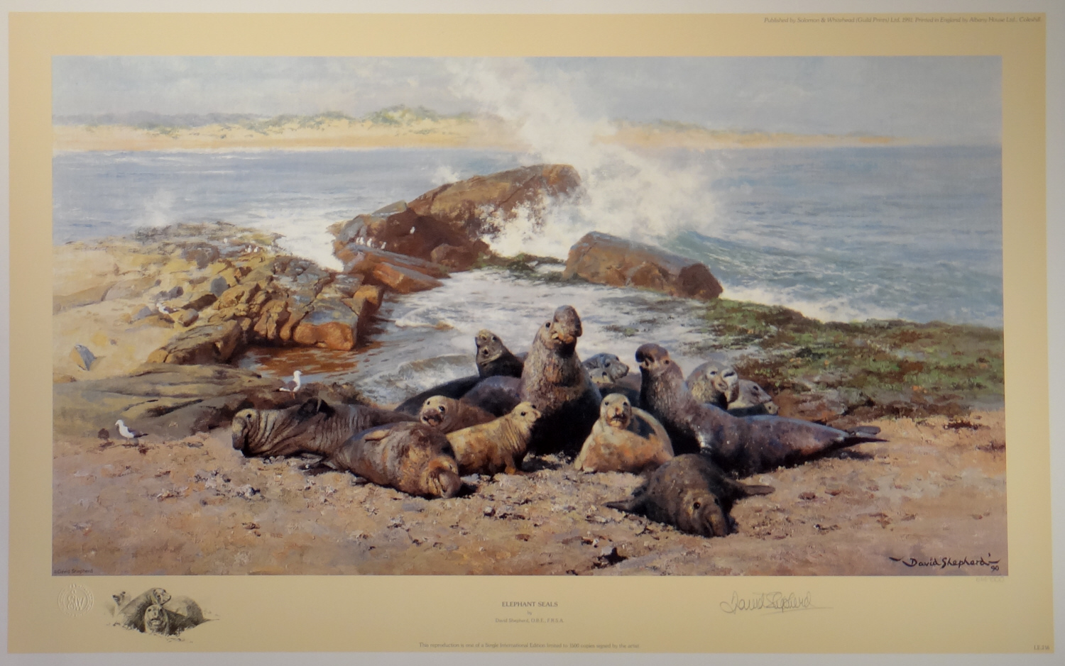 david shepherd, Elephant Seals, signed limited edition print