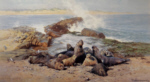 david shepherd elephant seals prints