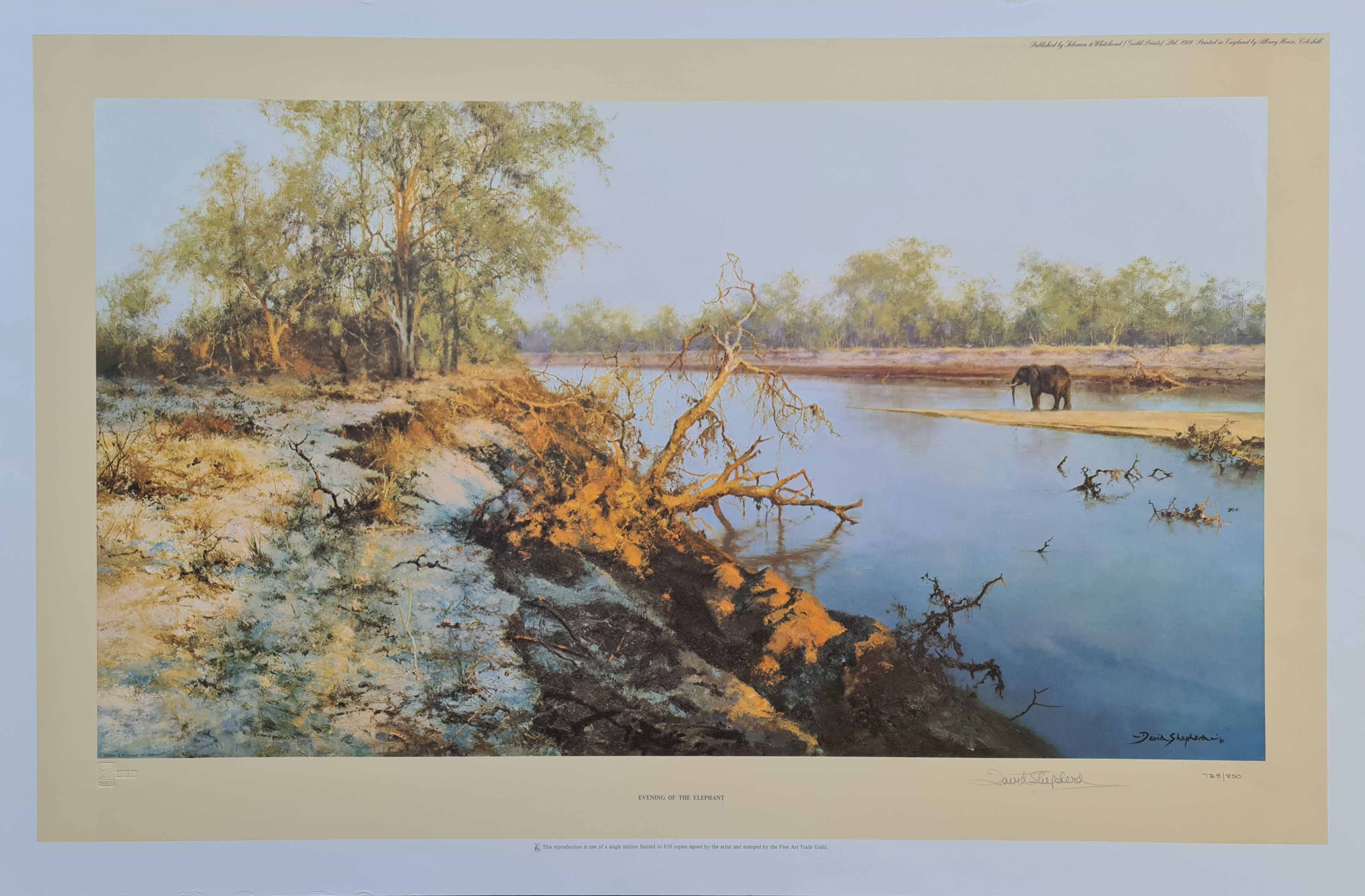 david shepherd eveningoftheelephant print