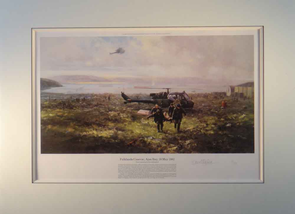 falklands print mounted