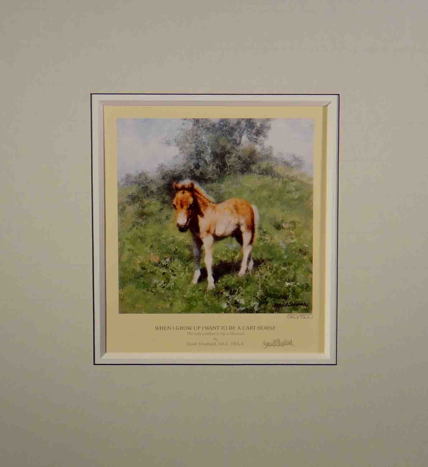 david shepherd, foal, horse, signed print