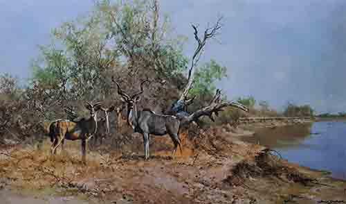 david shepherd antelope prints