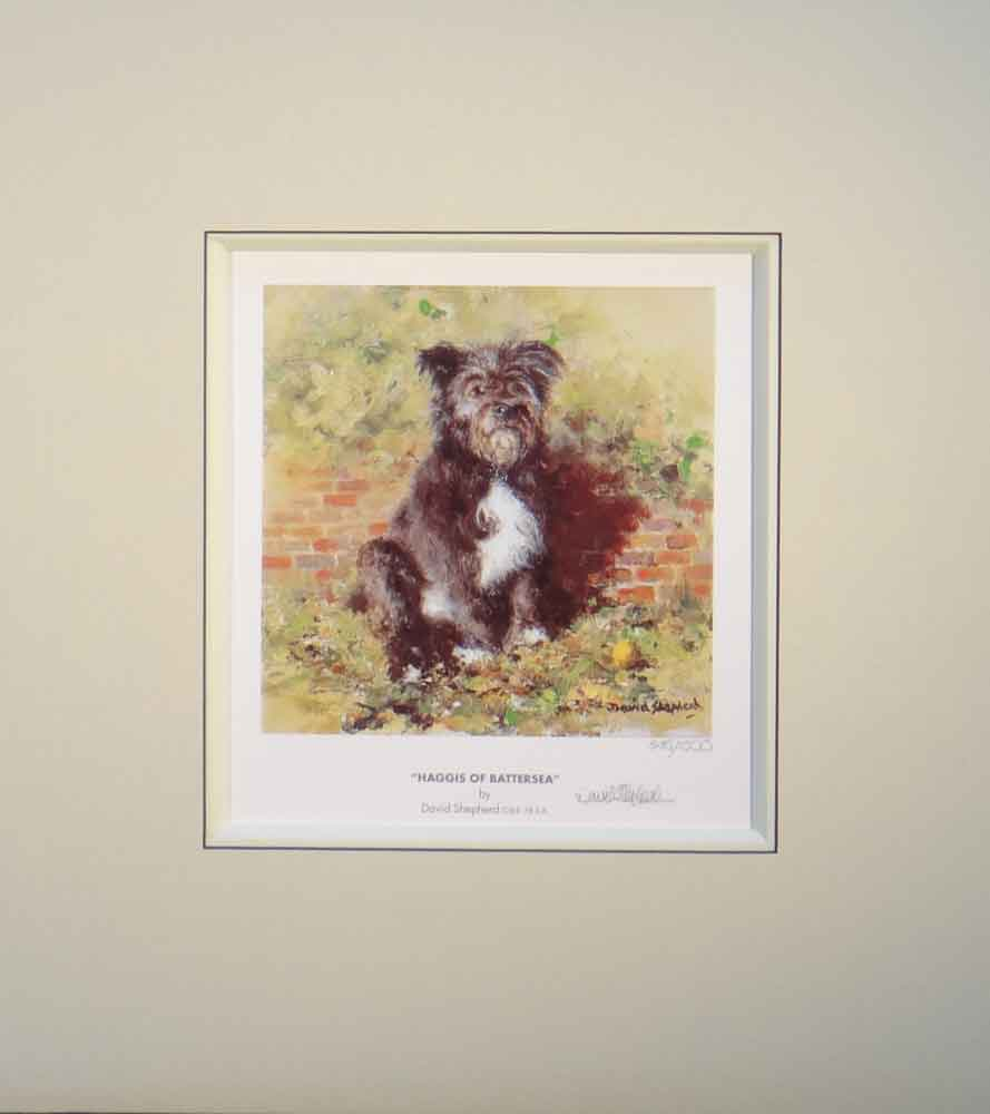 shepherd Haggis of Battersea dog signed print mounted