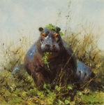 david shepherd, Happy Hippo, hippos, prints
