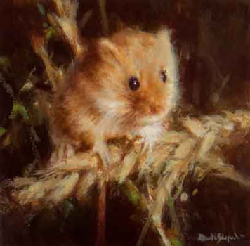 David Shepherd, harvest mouse, signed limited edition print