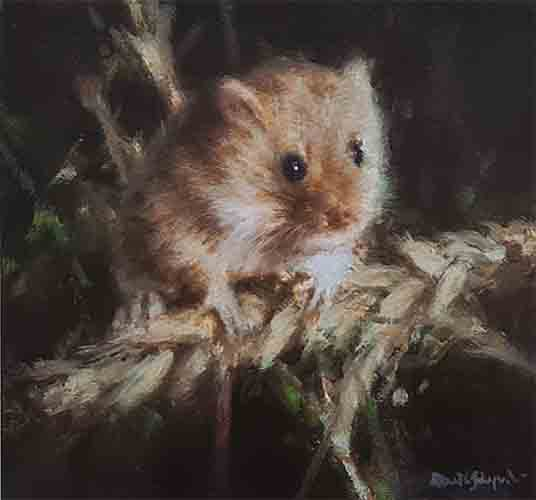 david shepherd harvest mouse print