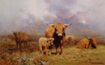 david shepherd cattle print