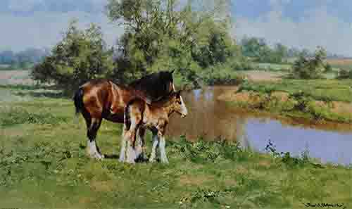 david shepherd, high noon, horses, print