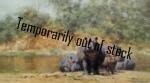 david shepherd hot potami, hippos, prints