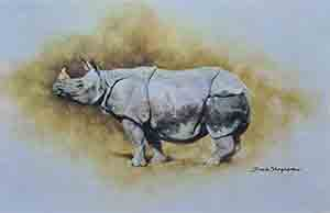 david shepherd rhinos prints