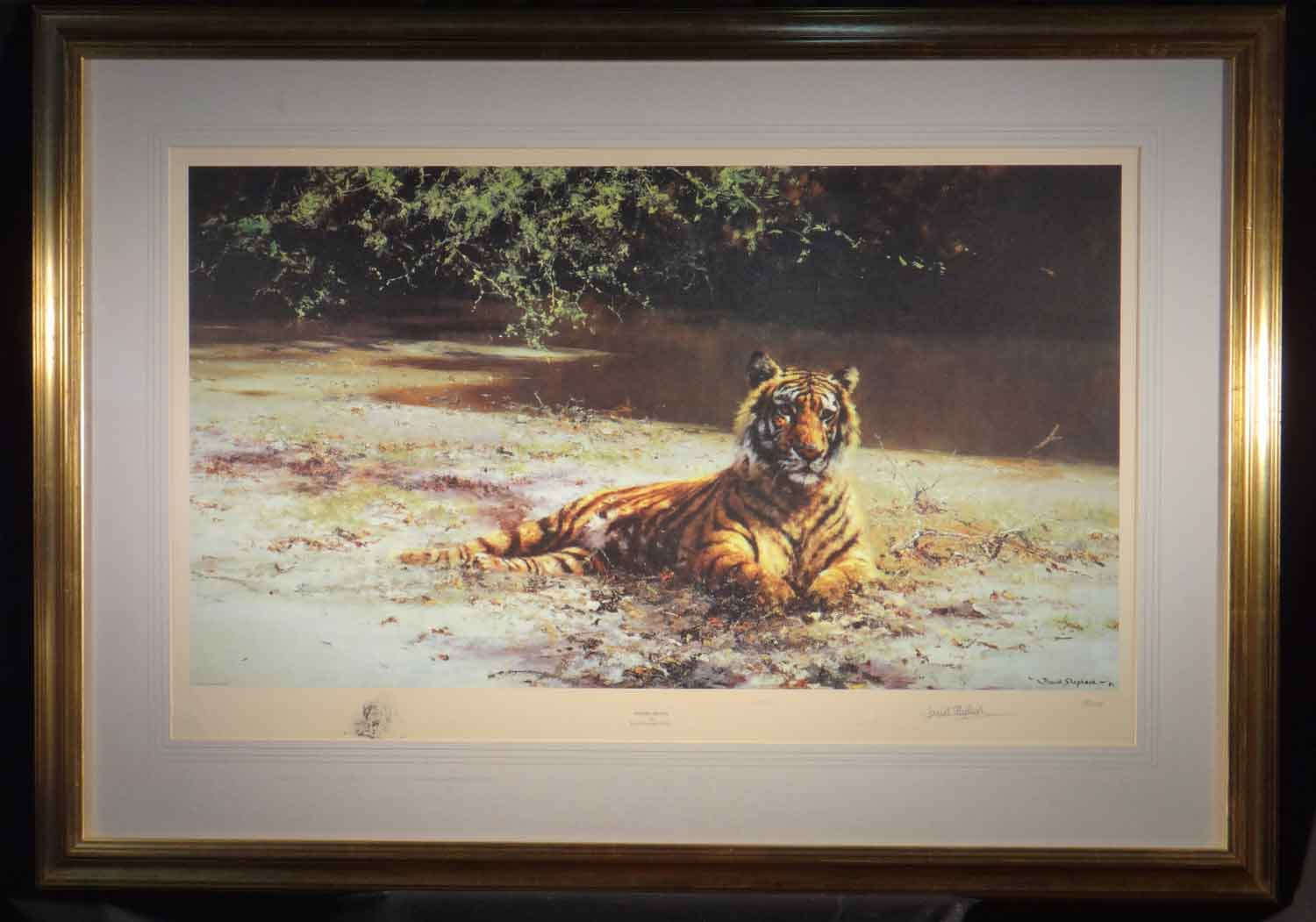 david shepherd, indian siesta, signed limited edition print