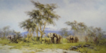 david shepherd in the shadow of kilimanjaro elephants print