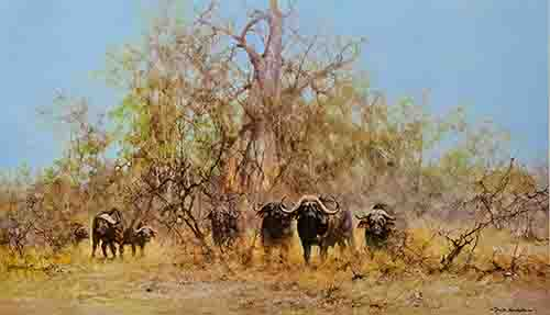 david shepherd water buffalo